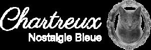 logo mit Boccaccio katze
